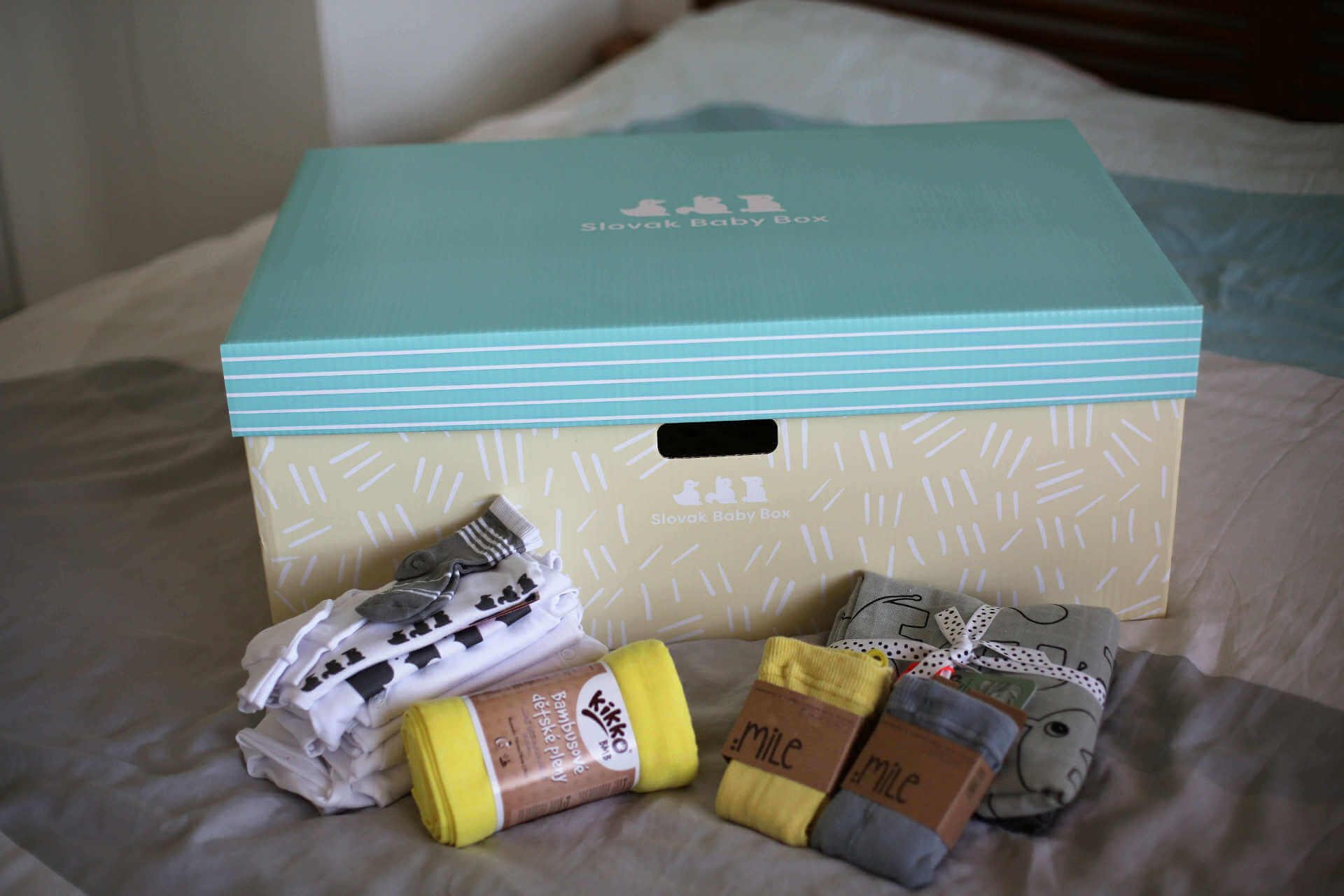 Slovak Baby Box®